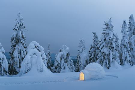 Snow igloo luminous from the inside in the winter Carpathian mountains. Snow-covered firs in the evening light in the background.