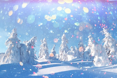 Fantastic winter landscape with snowy trees in high mountains. DOF bokeh light postprocessing effect. Christmas holiday collage Stock Photo