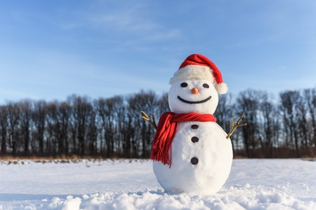 Funny snowman in santa hat and red scalf on snowy field. Christmass and New Year background Imagens