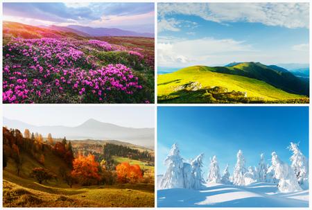 Vier seizoenen natuurlandschappen in de bergen.