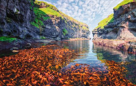 Beautiful view of dock or harbor with clear water and red seaweed in Gjogv village, Eysuroy island, Faroe Islands, Denmark. Landscape photography