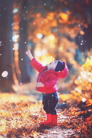 Little toddler boy in red rubber boots and red jacket catching drops of rain in autumn park. Orange forest leaves on background 版權商用圖片