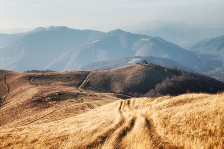 Yellow grass trembling in the wind in autumn mountains at sunrise. Carpathian mountains, Ukraine. Landscape photography