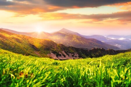 Summer mountain landscape in Carpathians. Green grass and mountains range on background. Incredible sunrise in national nature park 版權商用圖片