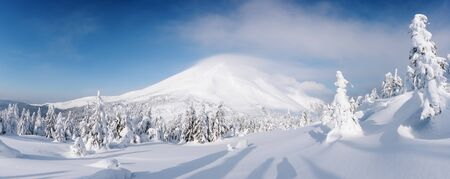 Panorama of fantastic winter landscape with snowy trees. Carpathian mountains, Ukraine, Europe. Christmas holiday concept