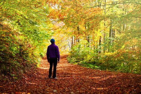 Man walking in autumn forest with orange trees. Landscape photography