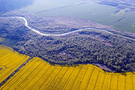 Flight through majestic river, lush green forest and blooming yellow rapeseed fields at sunset time. Landscape photography Фото со стока