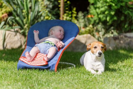 Baby boy lies on a deck-chair with dog on green lawn. Relax and vacation concept