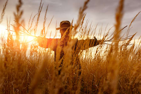 Terrible scarecrow in dark cloak and dirty hat stands alone in a autumn field at sunset time. Halloween concept Stock Photo
