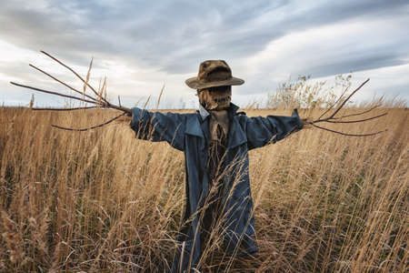 Terrible scarecrow in dark cloak and dirty hat stands alone in a autumn field. Halloween concept Banque d'images