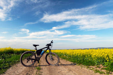 Black male bike on blooming yellow rapeseed field. Breathable landscape with blue cloudy sky at rural contrside