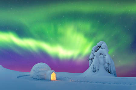 Aurora borealis. Northern lights in winter mountains. Wintry scene with glowing polar lights and snowy igloo