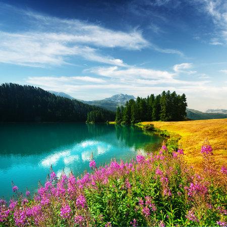Amazing sunny day at Champferersee lake in the Swiss Alps. Silvaplana village, Switzerland, Europe. Landscape photography Standard-Bild
