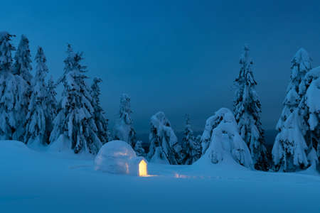 Snow igloo luminous from the inside in the winter mountains. Snow-covered firs in the evening light in the background. Landscape photography