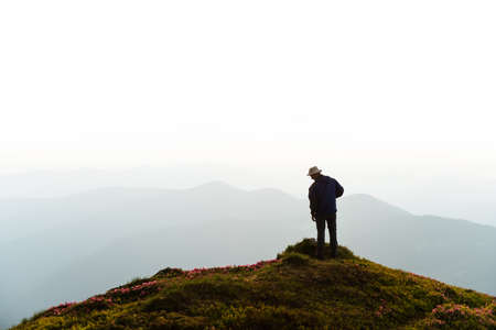 A tourist stay on the edge of a cliff covered with a pink carpet of rhododendron flowers in the summer. Foggy mountains on the background. Landscape photography