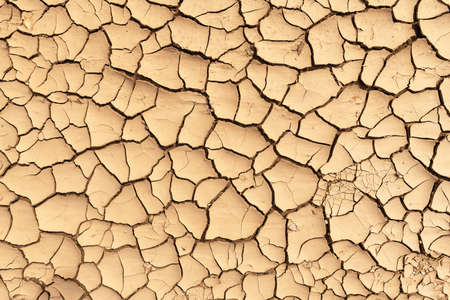 Cracked land texture close up Standard-Bild