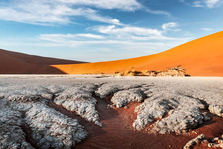 Dried ground with sand in Namib desert during sunset