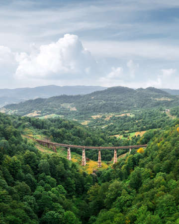 Old railway bridge in lush summer forest in Carpathians mountains
