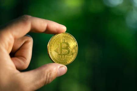 Golden bitcoin coin on lush green moss