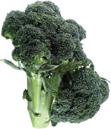 isolated broccoli photo