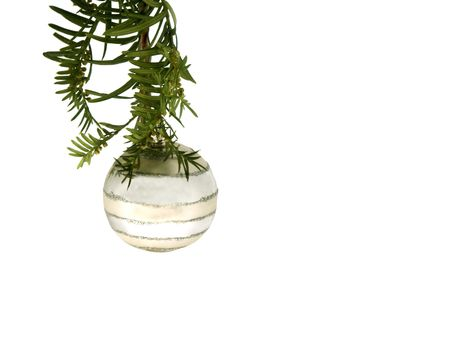 room for text: isolated ornament hanging from pine ,room for text