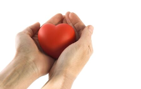 isolated sponge heart and hands with room for copy ,text photo