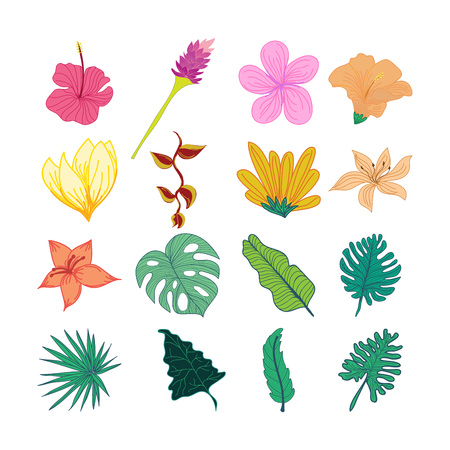 Decorative Tropical Flower And Leaves Hand Drawn Illustration