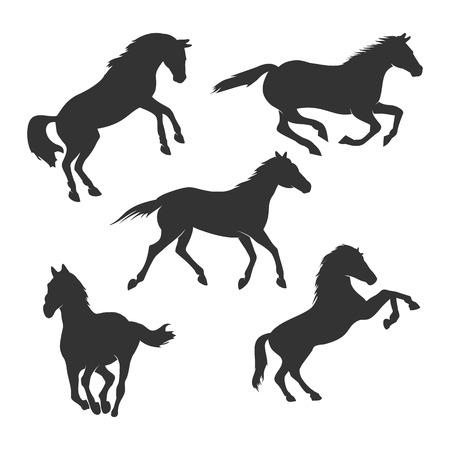 Beautiful Horse Silhouette Vector Graphic Design Template Set