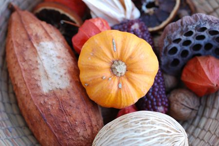 Pumpkin and other autumn things composition. Fall and autumnal concept.