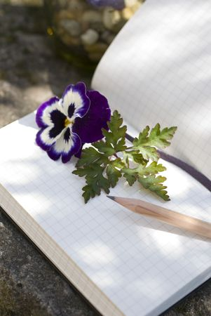 Old Diary book and natural decoration concept of  writer creativity photo