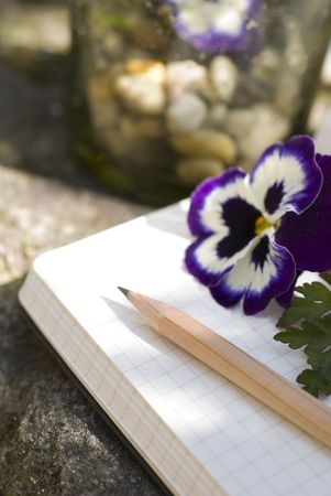 Old Diary book and natural decoration concept of  writer creativity Stock Photo - 2780121