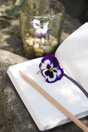 Old Diary book and natural decoration concept of  writer creativity