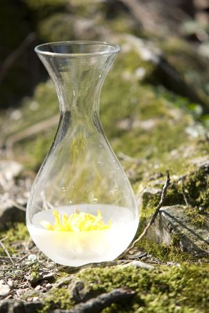 traquility: bottle aromatherapy,  rocks and moss