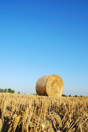 Straw bales on italian farmland with blue sky Stock Photo - 3368549