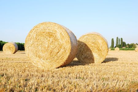 Straw bales on italian farmland with blue sky Stock Photo