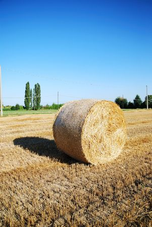 Straw bales on italian farmland with blue sky Stock Photo - 3371406