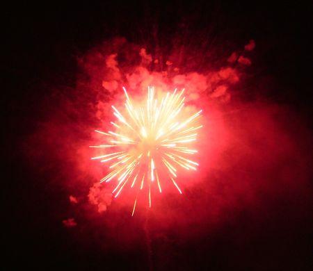 multi national: Beautiful firework on the night sky