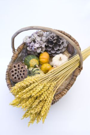 Wicker basket with autumn fruit and vegetables, isolated Stock Photo - 3636395