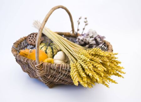 Wicker basket with autumn fruit and vegetables, isolated Stock Photo - 3667061