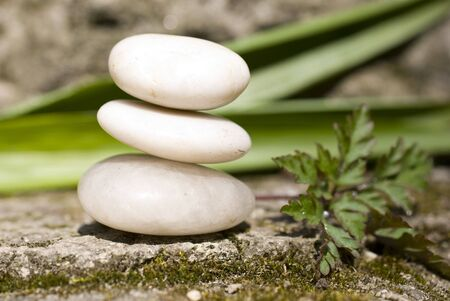 zen Aromatic flower and stones Banco de Imagens