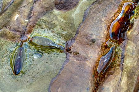 buon: colored rock on a Thailand beach, Ko Buon island