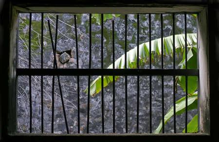 con dao: Window of a convict prison cell in Vietnam, Con Dao island