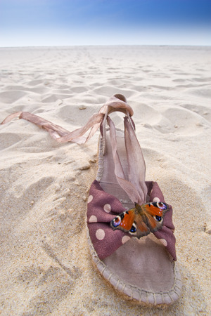 nymphalis: Nymphalis io butterfly on woman shoe on a french wild atlantic beach