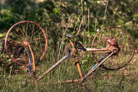 rusting: old and rusty abandoned bicycle in a wild field, hdr picture