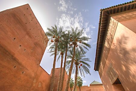 wide angle: dynamic wide angle view of palm trees in a moroccan palace court,marrakesh