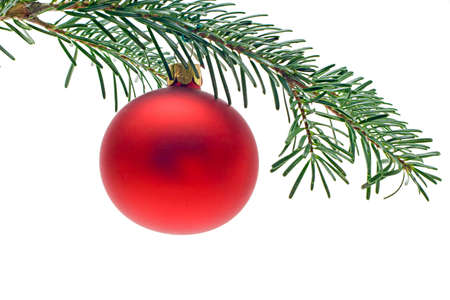 branche sapin noel: d�coration boule rouge sur la branche d'arbre de No�l isol� sur fond blanc