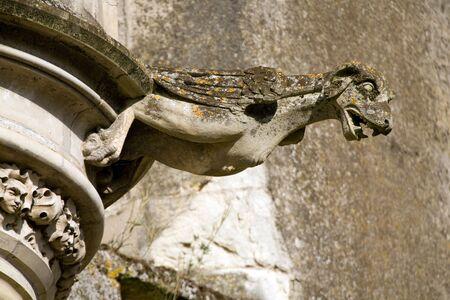 de aves con cabeza de perro gárgola en castillo francés clásico  Foto de archivo - 3459619