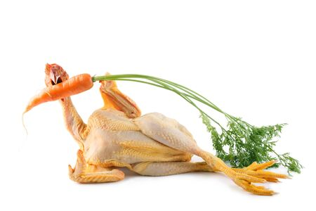 cock: nude chicken holding and biting a fresh carrot