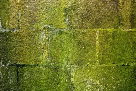 mossy: ancient stone wall with green moss Stock Photo