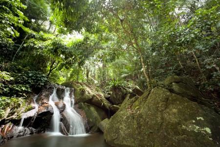 beautiful waterfall in tropical rainforest, Tioman island, Malaysia Stock Photo - 7649151